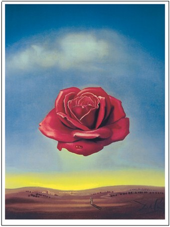 Meditative Rose 1958 - Salvador Dali