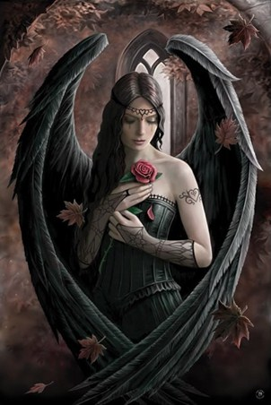 Angel Rose - Anne Stokes