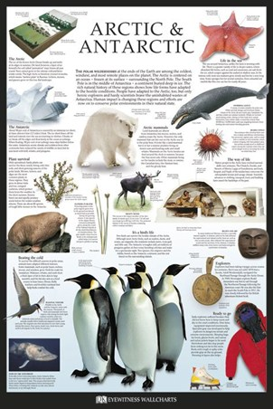 The Arctic & Antarctic, Dorling Kindersley