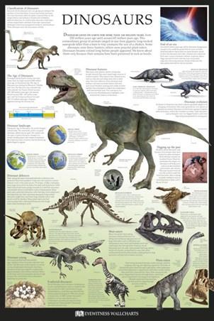 Framed Dinosaurs - Dorling Kindersley