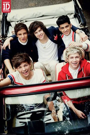 the boys from 1d one direction poster popartuk