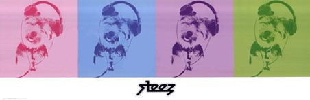 DJ Doggie Quad - Steez