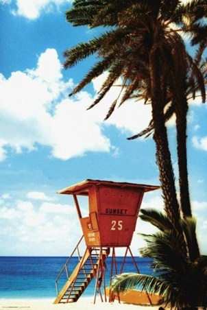 Lifeguard Hut - Paradise