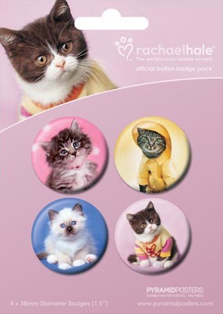 Cute Cats - by Rachael Hale
