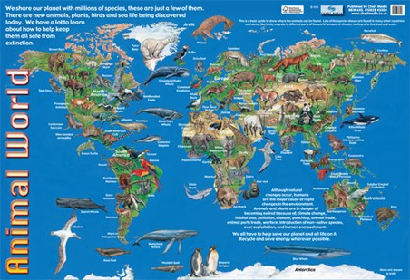 Animals of the world animal world map poster buy online framed animals of the world animal world map gumiabroncs Gallery