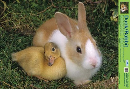 Best Friends - Duck And Rabbit