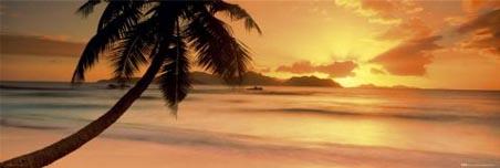 Seychelle Island - Tropical Island Scene