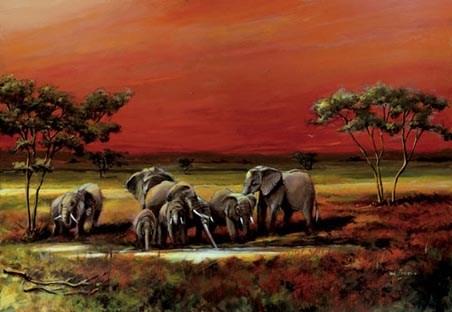 African Elephants - African Oasis