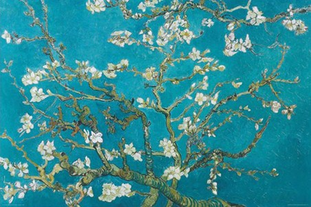 Almond Blossom (1890) Vincent Van Gogh Poster