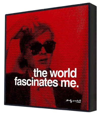 The World Fascinates Me - Andy Warhol Box Print
