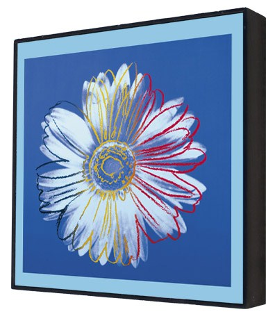 Daisy, c.1982 (blue on blue) - Andy Warhol Box Print