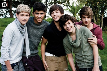 Framed Beautiful Boys in the Garden - One Direction