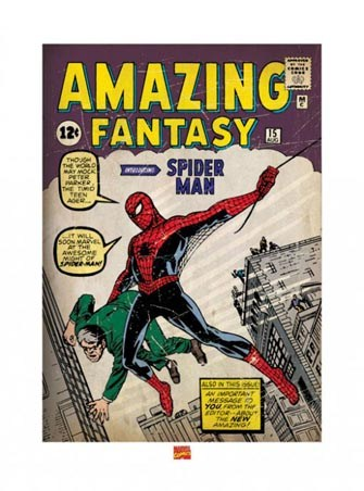 Spider-Man 1st Issue - Comic Cover Art