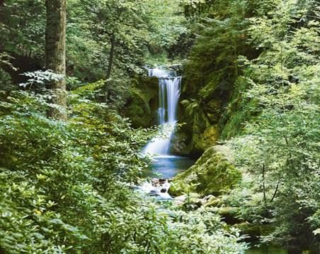 Waterfall in Spring - 8 Sheet Waterfall Wall Mural