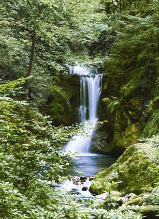 Waterfall in Spring - Photography 4 Sheet Wall Mural