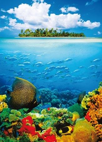 Treasure Island - Tropical 4 Sheet Wall Mural