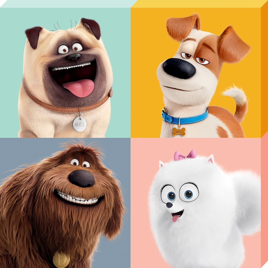 Character Split The Secret Life Of Pets Canvas Buy Online